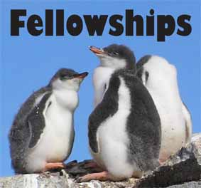 SCAR WMO Fellowship logo